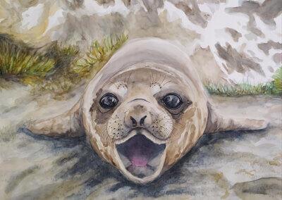 Malování zvířete akvarelem, kreslení tužkou i fixou